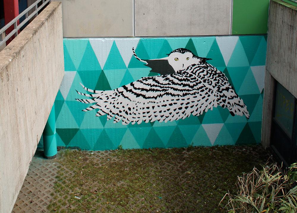 Schulhofgestaltung vom Graffiti-Künstler von Farbkombo in Köln.Die Eule ist auf türkiesem Hintergrund gemalt.